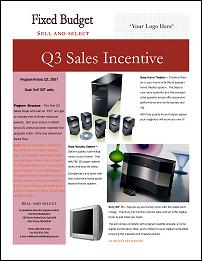 Sales Incentive Programs